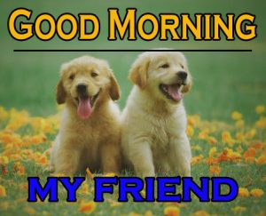Good Morning Images For Puppy Lover 11