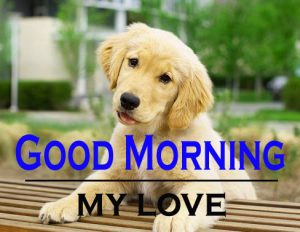 Good Morning Images For Puppy Lover 12