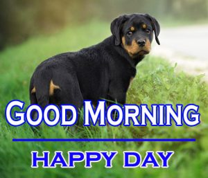 Good Morning Images For Puppy Lover 16