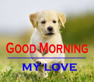 Good Morning Images For Puppy Lover 17