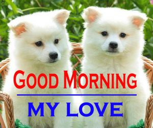 Good Morning Images For Puppy Lover 2