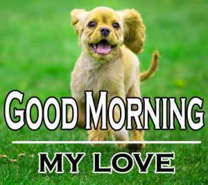 Good Morning Images For Puppy Lover 4