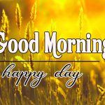 136+ Good Morning Sunshine Images Wallpaper