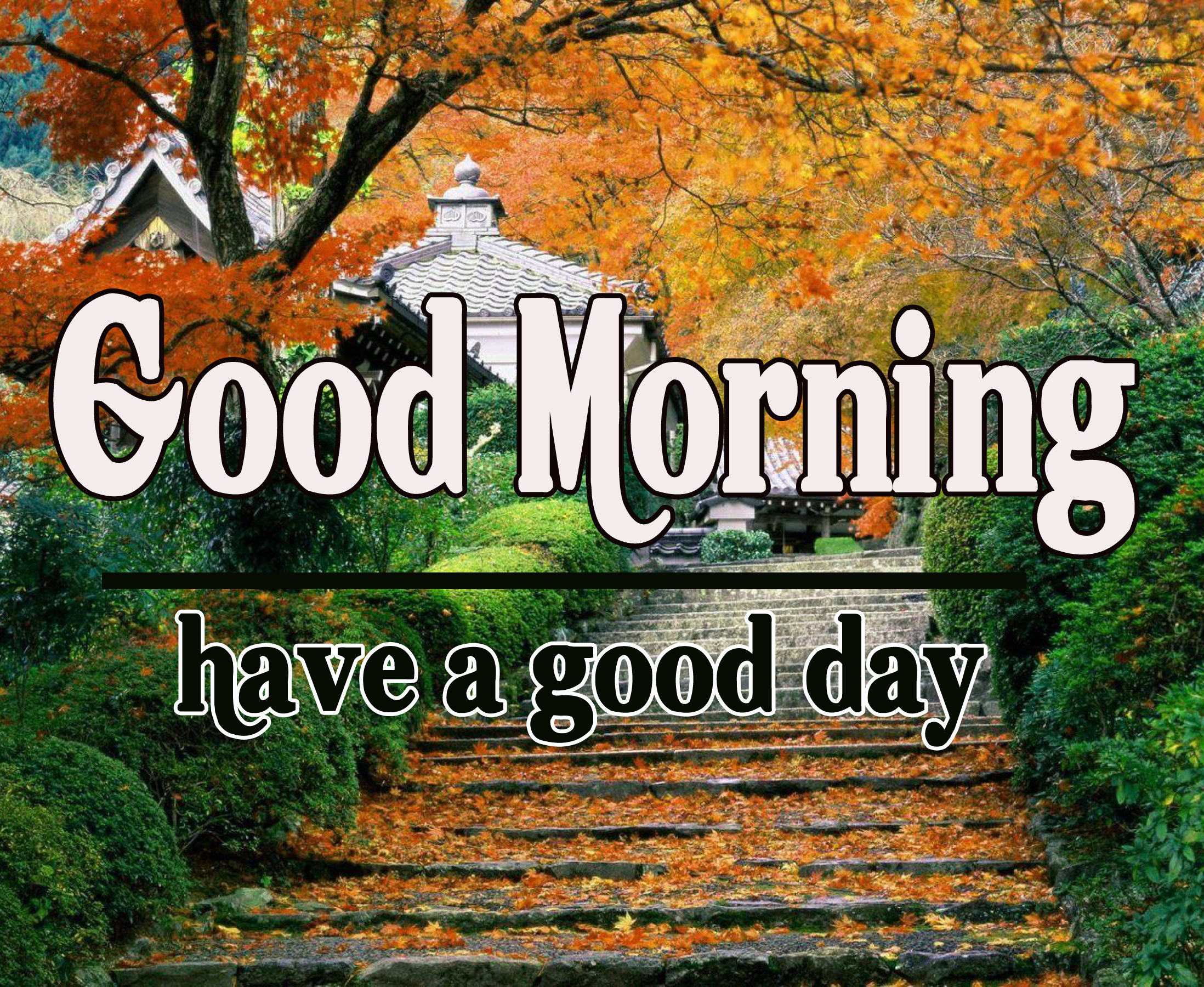 22+ Good Morning World Images Wallpaper Photo Pictures Pics Download