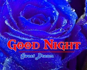 Good Night Images Pic Wallpaper Download