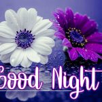 Good Night Picture Images 11