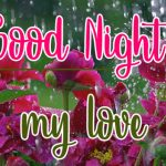 Good Night Picture Images 14