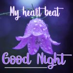Good Night Picture Images 5