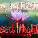 Good Night Picture Images 8