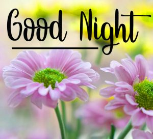 Good Night Wishes Images 2 1