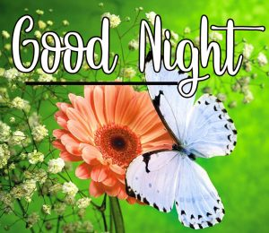 Good Night Wishes Images 4 1