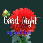 128+ Good Night Images Pics With Flower Cute Baby & Etc