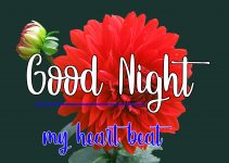 Good Night Wishes Images 7 1
