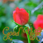 Good Night Wishes Images for Mobile 10
