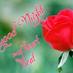 Good Night Wishes Images for Mobile 13
