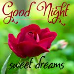 Good Night Wishes Images for Mobile 19
