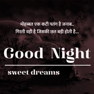 Hindi Quotes Good Night Images 13