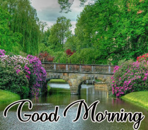 Best Good Morning Images Photo Pictures Wallpaper Pics Download In HD For Whatsaaap