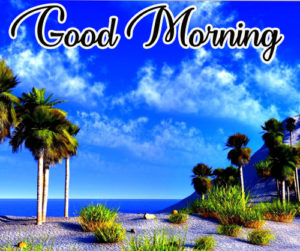 Good Morning Images Wallpaper Pictures Photo Pics HD Free Download