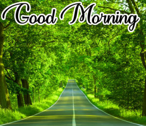 Gud / Good Morning Images Photo Wallpaper Pictures Pics HD For Whatsaap