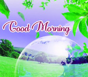 Gud / Good Morning Images  Photo Pictures Wallpaper Pics Download