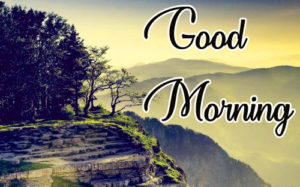 Gud / Good Morning Images  Photo Wallpaper Pictures In HD Download For Whatsaap