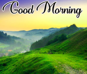 Gud / Good Morning Images  Wallpaper In HD Download