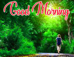 Gud / Good Morning Images  Photo Download