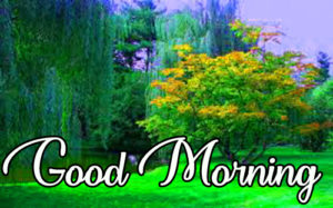 Gud / Good Morning Images photo With Quotes