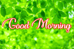 Gud / Good Morning Images Photo Pictures Download