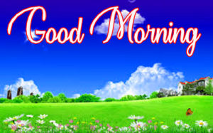Gud / Good Morning Images Photo for Whatsaap