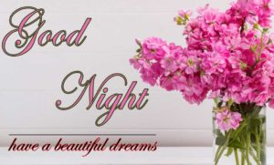 Good Night Images With Flower