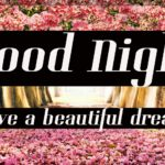 232+ Beautiful Good Night Images Photo Pictures HD For Friends