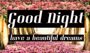 Good Night Images HD Download Free