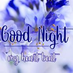 458+ Good Night Greetings Graphics Images Pics Download