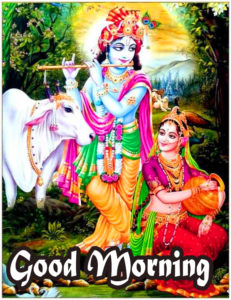 Radha Krishna Good Morning Images 66