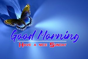 Best free Sunday Good Morning Images Pics Wallpaper Pictures