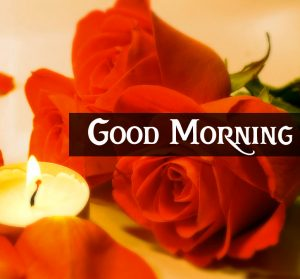 Good Morning Images with red rose