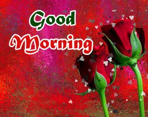 Good Morning Images download free