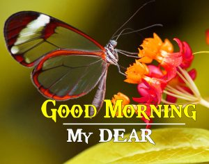 Good Morning Images For Wife HD Download