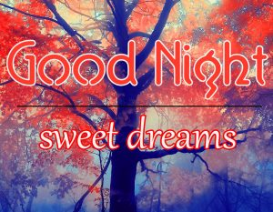 Good Night Wallpaper 26 1