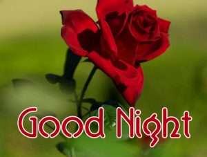 Good Night Wallpaper 4