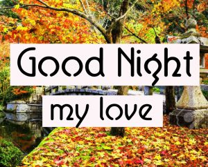 Good Night Wallpaper 64