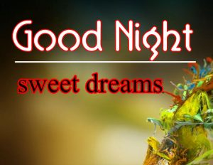 Good Night Wallpaper 74 1