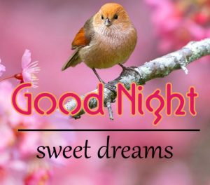 Good Night Wallpaper 95