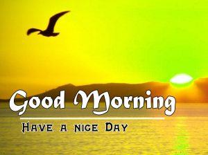Sunrise Good Morning Images Pics photo Download
