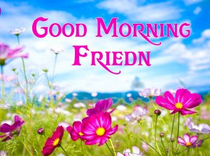 friends good morning images 1