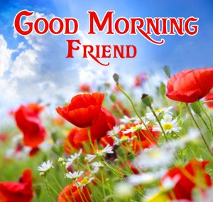 friends good morning images 12