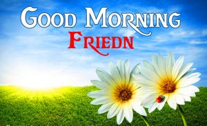 friends good morning images 14