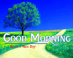 friends good morning images 15